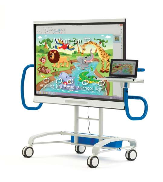 Interactive Whiteboard & Flat Panel Carts